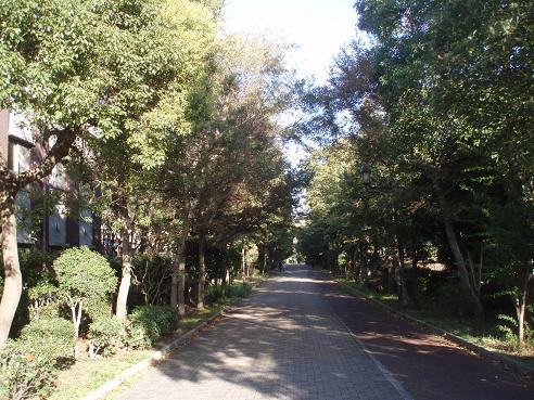 コスモスクエア~住之江公園 029.jpg