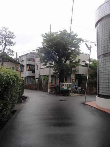 富田~上牧 031.jpg