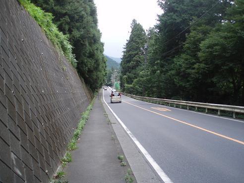 武蔵五日市~奥多摩 112.jpg