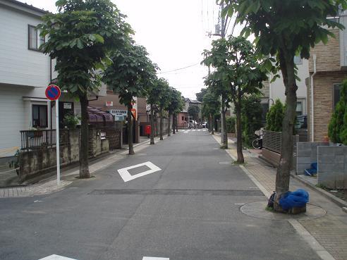 舎人~新三郷 006.jpg