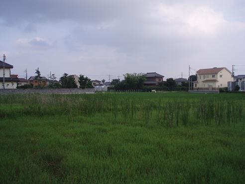 舎人~新三郷 106.jpg