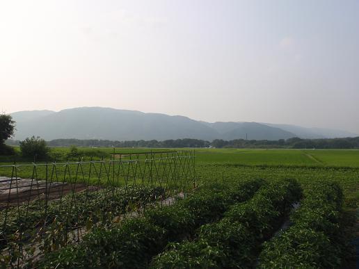 近江今津~上中 024.jpg