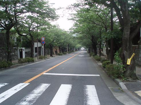 逗子~本郷台 019.jpg