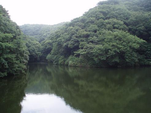 逗子~本郷台 038.jpg