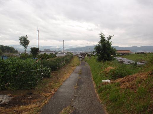 和泉砂川~下井阪 082.jpg