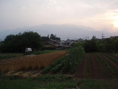 寄り道2009 025.jpg