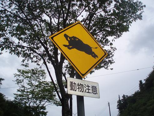 新三田~広野 011.jpg