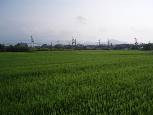 法隆寺~巻向 048.jpg