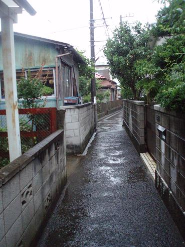 野島公園~田浦 010.jpg