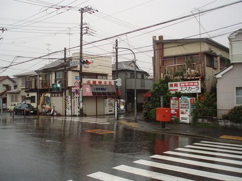 野島公園~田浦 013.jpg