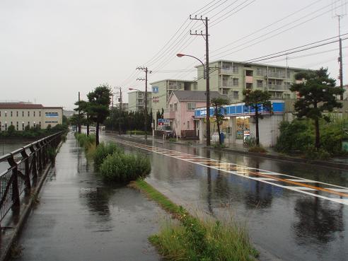 野島公園~田浦 020.jpg
